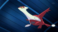 Schwester Joys Latias.jpg