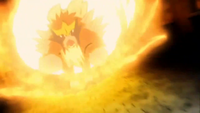 Entei Flammenblitz.png