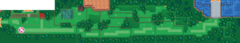 ORAS-Map Route 123.png