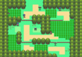 DP Route 202.png